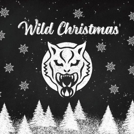 Wir-wuenschen-euch-frohe-Weihnachten-und-ein-gesundes-besseres-Jahr